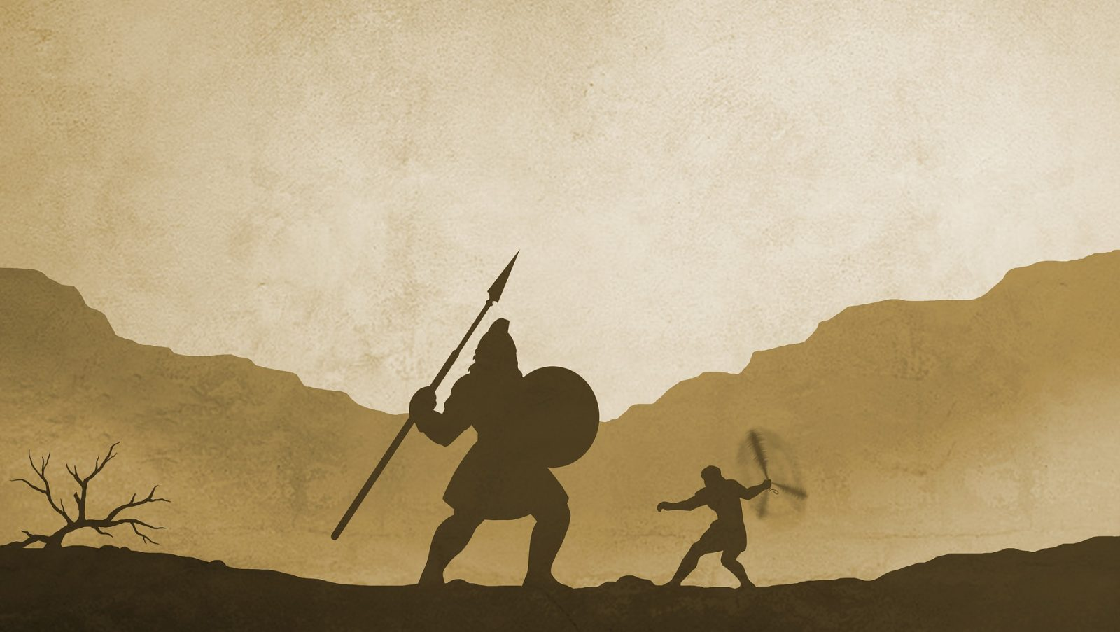 David and Goliath: A Business Perspective